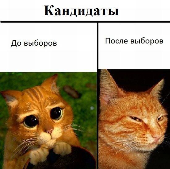 http://zagony.ru/admin_new/foto/2011-11-30/1322641250/fotopodborka_sredy_88_foto_2.jpg