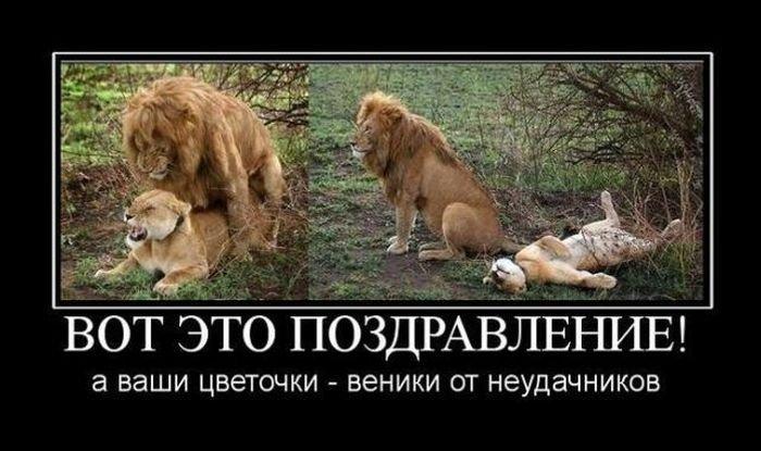 http://zagony.ru/admin_new/foto/2013-3-7/1362648816/kartinki_k_8_marta_37_foto_16.jpg