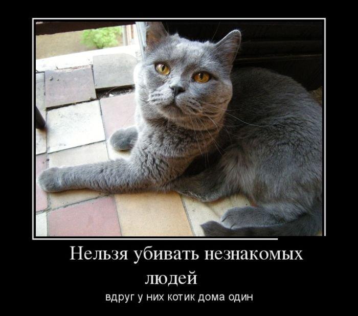 http://zagony.ru/admin_new/foto/2013-4-30/1367309258/demotivatory_na_vtornik_30_foto_15.jpg