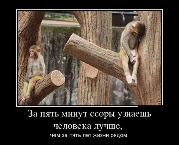 http://zagony.ru/admin_new/foto/2013-9-17/1379406778/demotivatory_na_vtornik_30_foto_30.jpg
