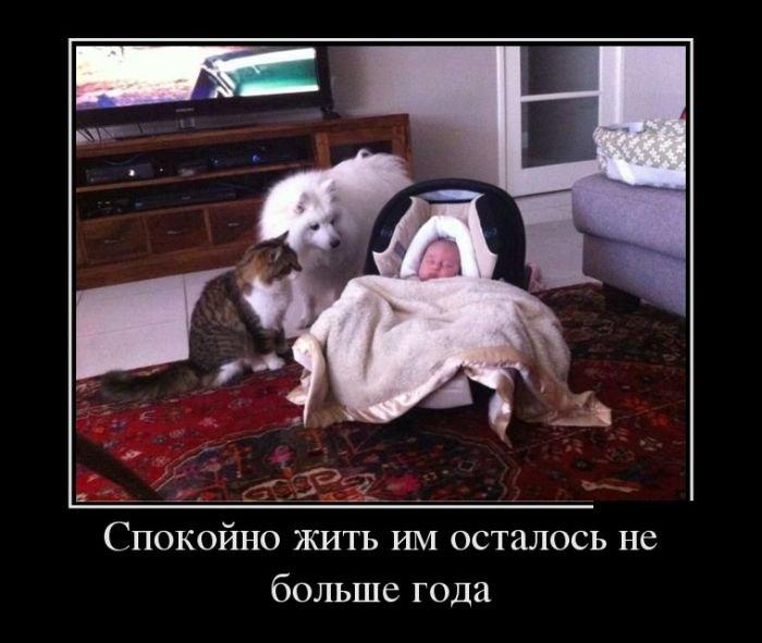 http://zagony.ru/admin_new/foto/2013-9-24/1380010365/demotivatory_na_vtornik_30_foto_21.jpg