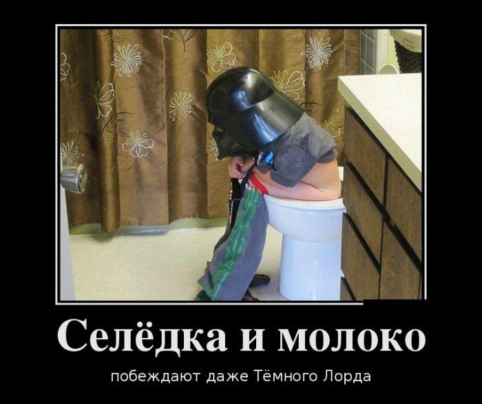 http://zagony.ru/admin_new/foto/2013-9-24/1380010365/demotivatory_na_vtornik_30_foto_22.jpg