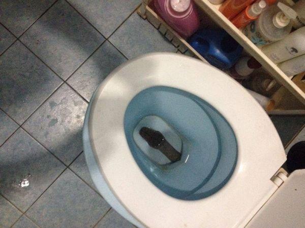 zashla-v-tualet-a-tam