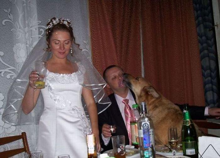 russkoe-porno-so-svadbi