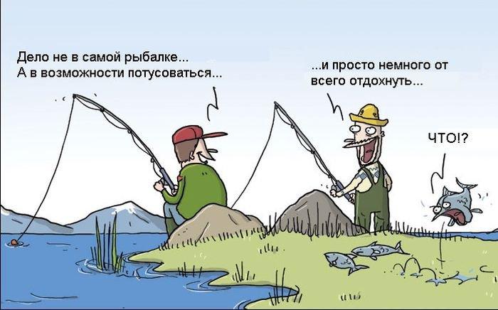 http://zagony.ru/admin_new/foto/2014-10-31/1414743765/zagonnye_komiksy_20_foto_10.jpg