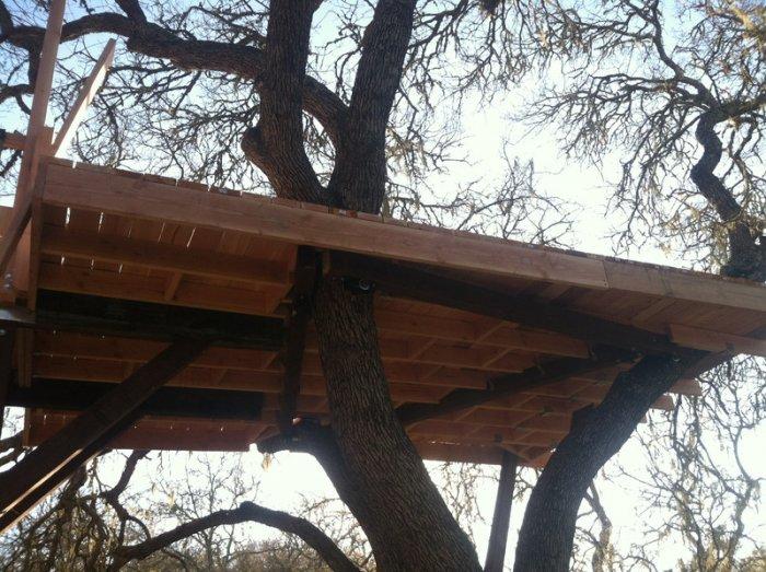 Как построить домик на дереве (27 фото)