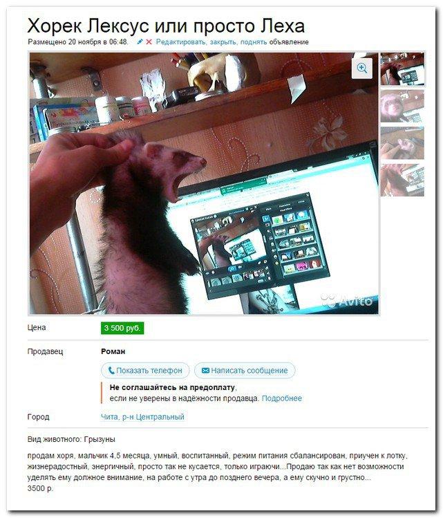 Скриншоты из социальных сетей. Часть 292 (40 фото)