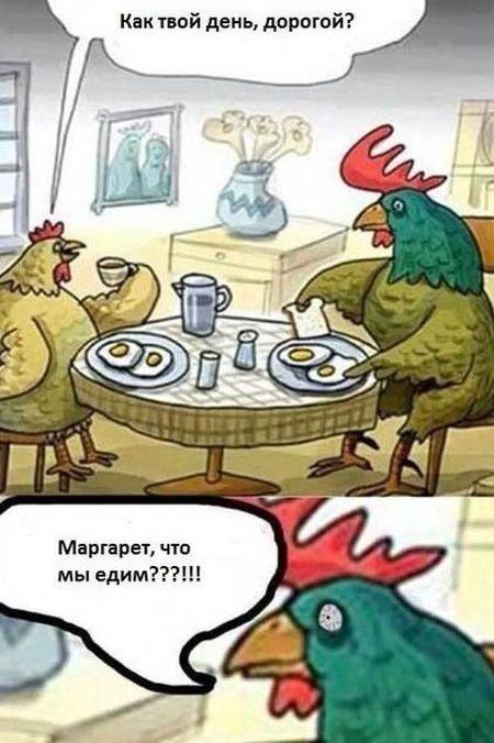 http://zagony.ru/admin_new/foto/2015-12-30/1451463903/zagonnye_komiksy_20_foto_6.jpg