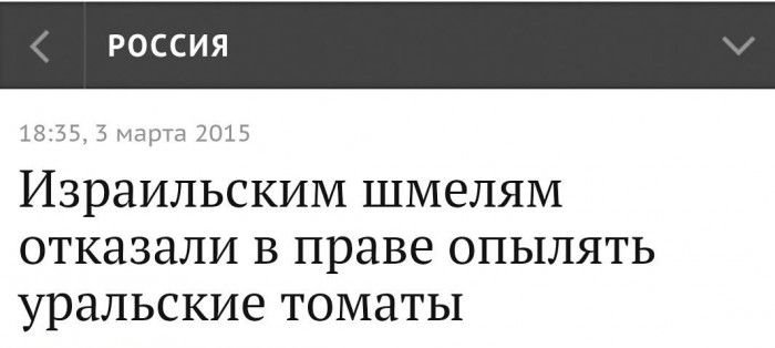 Введение новых санкций против РФ зависит от выполнения минских соглашений, - глава МИД Франции - Цензор.НЕТ 9343