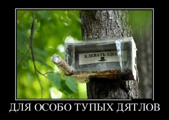 demotivatory_na_chetverg_29_foto_10.jpg