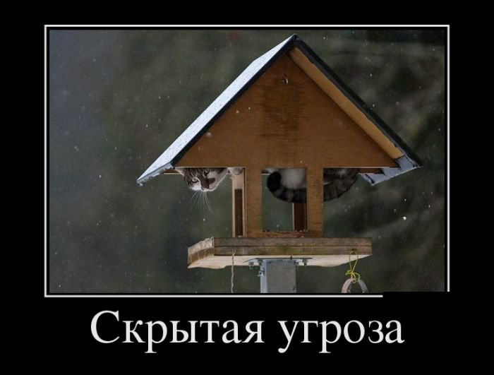 http://zagony.ru/admin_new/foto/2016-1-13/1452670721/demotivatory_na_sredu_30_foto_16.jpg