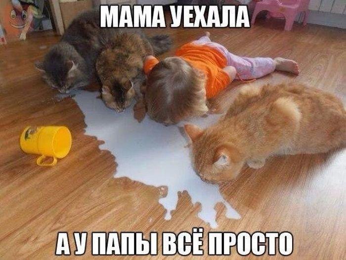 http://zagony.ru/admin_new/foto/2016-2-11/1455223003/fotopodborka_pjatnicy_105_foto_34.jpg