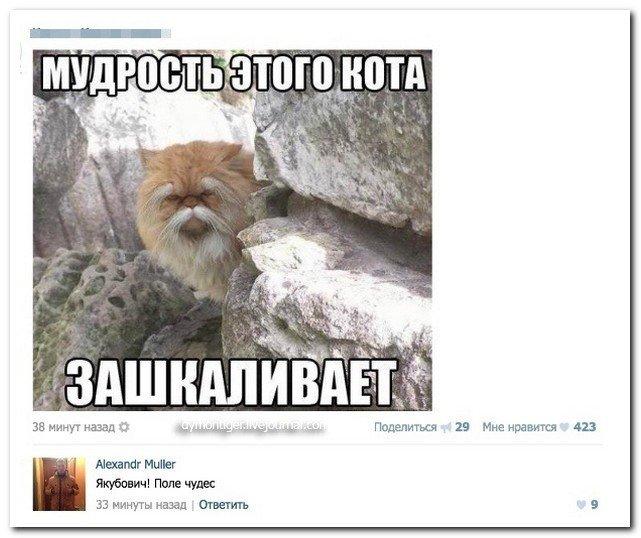 Скриншоты из социальных сетей. Часть 327 (60 фото)