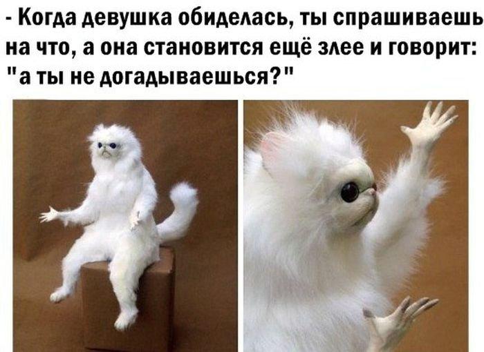 ������������ ������������ (58 ����)