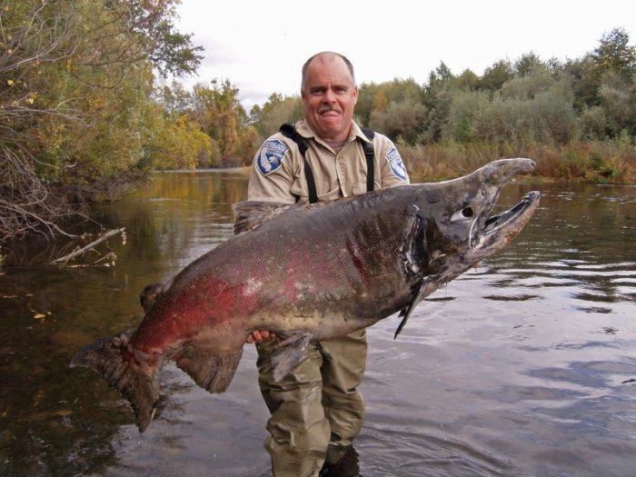 рыбак с самой большой рыбой