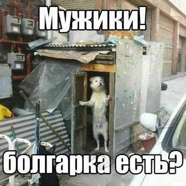 fotopodborka_sredy_108_foto_28.jpg