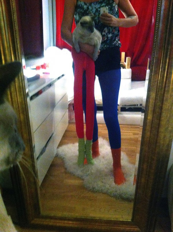 42 Pictures Of Cats Wearing Tights  WeKnowMemes