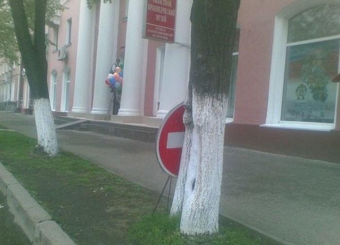 мы знакомимся с дорожными знаками 1 класс