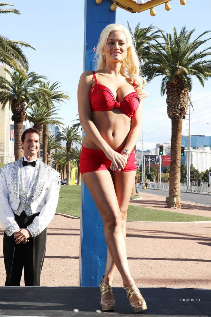 Holly Madison (12 фото)