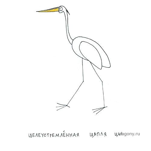 http://zagony.ru/uploads/posts/2011-07/1311930274_028.jpg