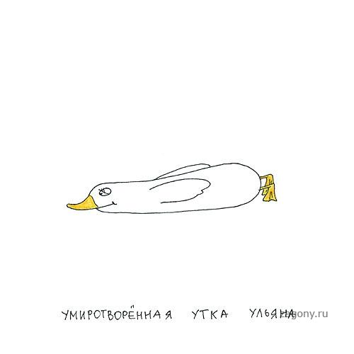 http://zagony.ru/uploads/posts/2011-07/1311930313_025.jpg