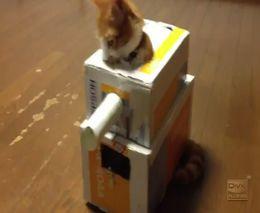Танк для кота (3.060 MB)