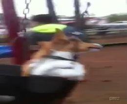 Пес любит кататься на качелях (1.243 MB)