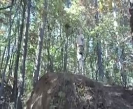 Разбегусь и прыгну со скалы (1.972 MB)