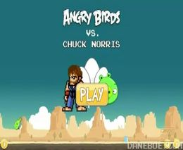 Chuck Norris vs Angry Birds (2.135 MB)