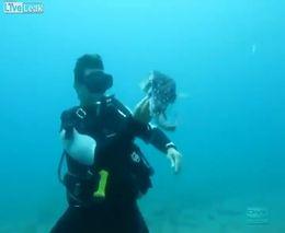 Дайвер спас рыбу - шар (8.452 MB)
