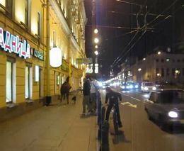 Лошадь и песик в центре города (4.262 MB)