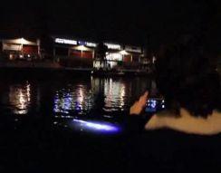 Светящееся существо в воде (4.449 MB)