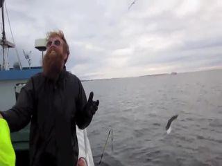 Поймал чайку руками (4.432 MB)