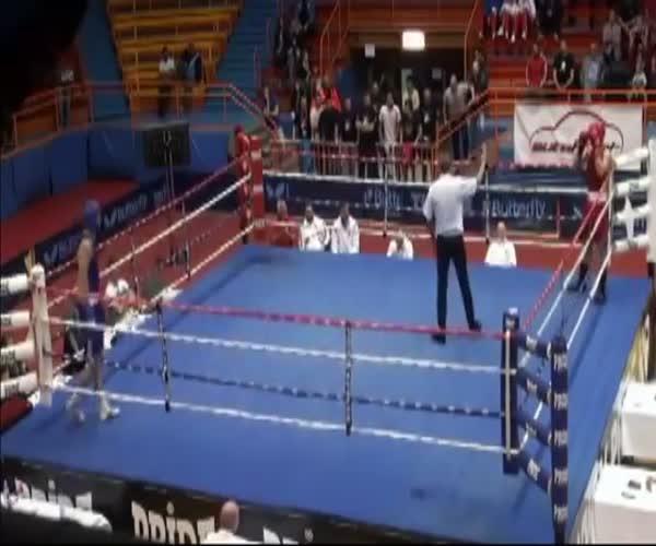Психованный боксер напал на судью (8.342 MB)