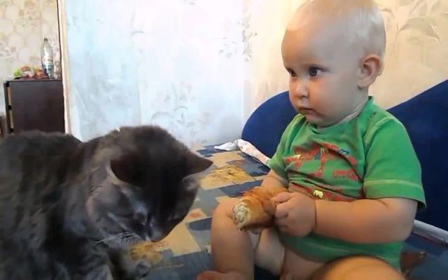 Малыш с котом едят булку (11.113 MB)