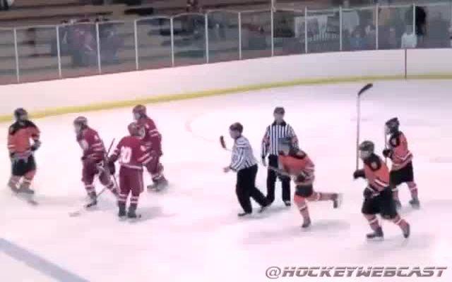 Зрелищное столкновение в хоккее (3.075 MB)