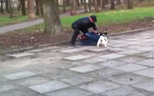 Хозяин защищает свою собаку (6.636 MB)