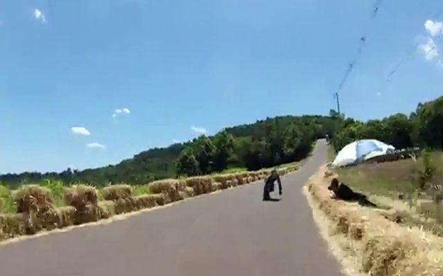Падение с лонгборда на огромной скорости (4.467 MB)