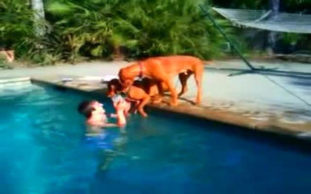 Собака переживает за хозяина под водой (4.503 MB)