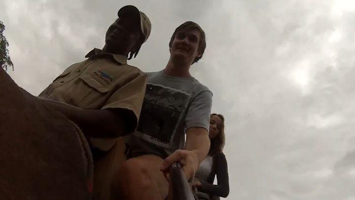Слон поднял упавшую видеокамеру (5.654 MB)