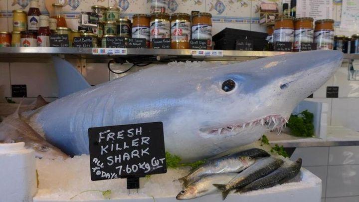 Ожившее чучело акулы (3.907 MB)
