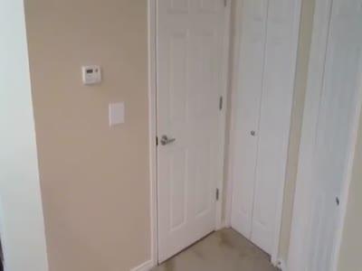 Котэ научился открывать двери (1.699 MB)