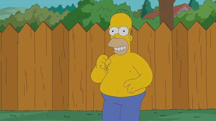 Гомер Симпсон тоже облил себя водой (4.519 MB)