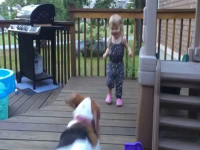 Девочка играет с собакой (4.557 MB)