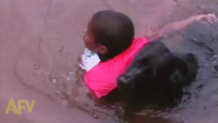 Собака спасет всех (8.798 MB)
