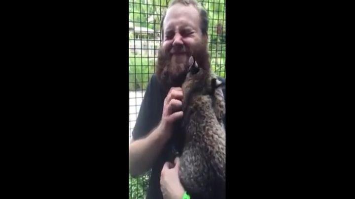 Маленькой рыси понравился бородатый мужик (2.017 MB)