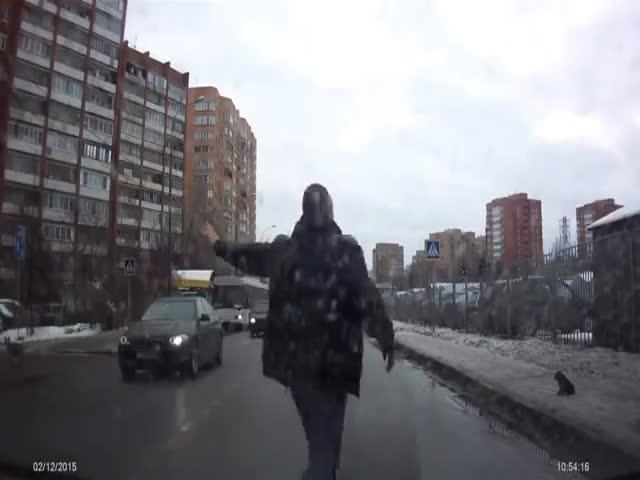 Водитель помог щенку перейти дорогу (1.460 MB)