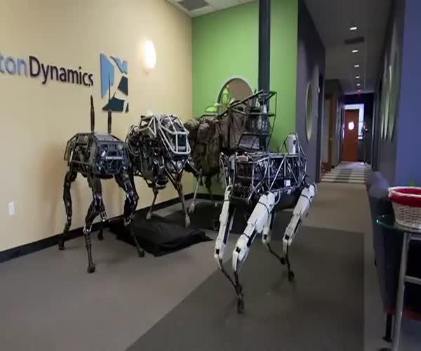 Возможности современных четвероногих роботов (11.257 MB)