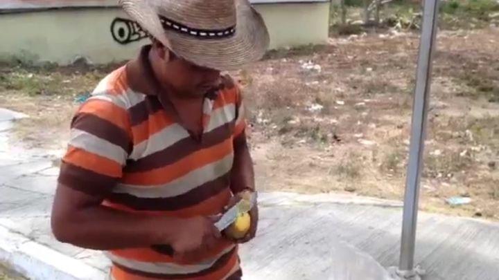 Как правильно нарезать манго (5.169 MB)