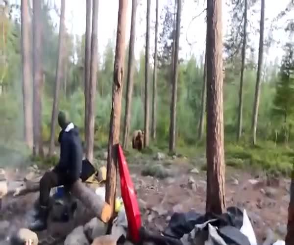 Туристы спели песню и отпугнули медведя (2.899 MB)